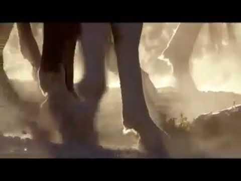Süleyman peygamberin atlara sevgisi