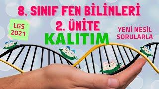 KALITIM   8. SINIF FEN BİLİMLERİ 2. ÜNİTE