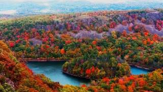Relaxing Nature Scenes - Fall Foliage Relaxing Piano Music Over Natural Sound