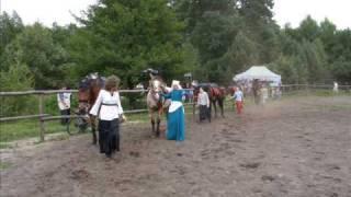 Rad & Tik oraz konie z Leśnego Konika