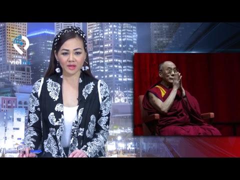VIETLIVE TV ngày 23 03 2019