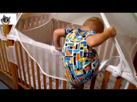 funny baby laughting - baby laughing