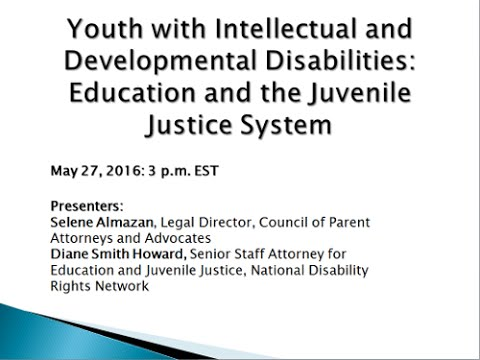 Youth with Intellectual and Developmental Disabilities: Education and the Juvenile
