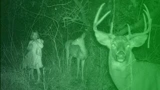 Crazy Hunting Stories