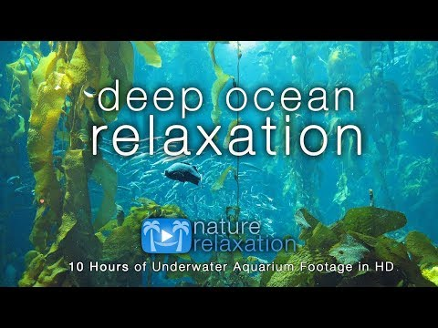 8HRS of Deep Ocean Relaxation in HD + Music for Rest, Deep Sleep, Stress Relief And Meditation)