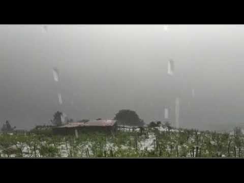 Una fuerte granizada causa estragos en los viñedos en San Fiz
