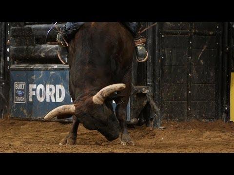 asteroid bucking bull semen - 480×360