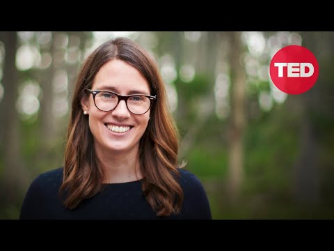 Susan Graham: A new way to restore Earth's biodiversity -- from the air   TED