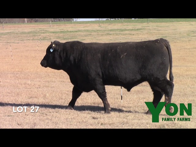 Yon Family Farms Lot 27
