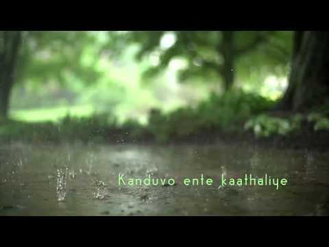 Mazhaye Thoomazhaye Lyrics – Pattam Pole   Beautiful Malayalam Song   Love Rain Song   മഴയേ തൂമഴയേ