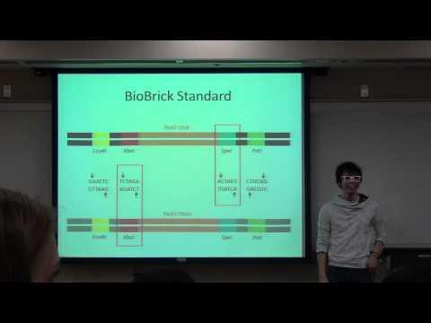 Lethbridge iGEM HS - DNA and Genetic Engineering: The Basics