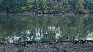ЛОВЛЯ КАРПА ИЗ ПОД КОРЯГ. Непредсказуемая рыбалка на топовом месте. Рыбалка осень 2021