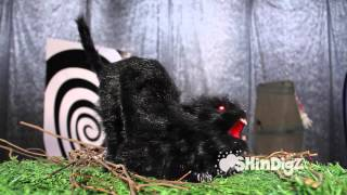 Sound Activated Animated Cat - Shindigz Halloween Decorations