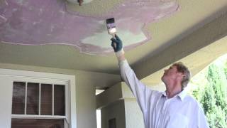 Remove and fix loose plaster from porch ceiling