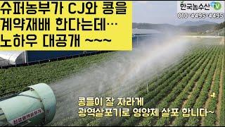 [한국농수산TV] 슈퍼농부가 CJ와 콩을 계약재배 한다…