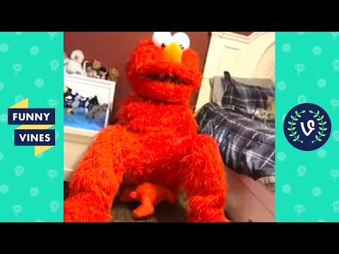 """""""WHEN ELMO GIVES BIRTH 😂 """"   TRY NOT TO LAUGH - FUNNY VIDEOS"""