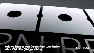 Kele vs Sander van Doorn feat Lucy Taylor - What Did I Do (Original Mix)