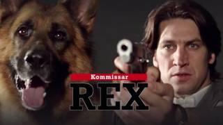 Классные фильмы с собаками