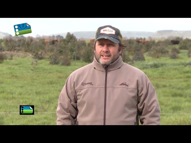 Agenda Agraria. Programa 18 de Septiembre