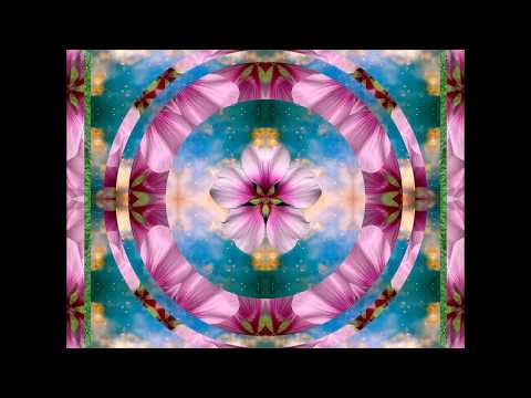 Natalie Glasson -  Join Us In Spirit To Manifest Divine Peace, Love, & Unity In Everyone !