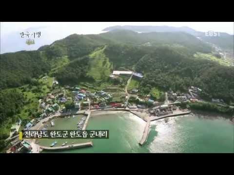한국기행 - Korea travel_섬 속의 섬을 가다 완도 1부 어머니의 섬 완도_#001