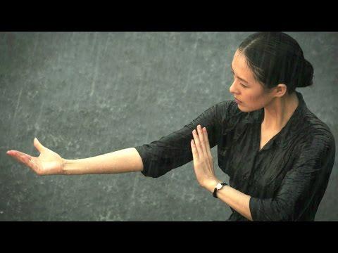 THE GRANDMASTER | Zhang Ziyi