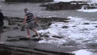 duckbill ray caught at gonubie slipway