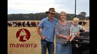 Mawarra Genetics Client Focus - Glenn Moutray