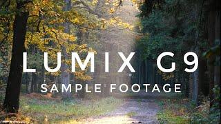 Panasonic LUMIX G9 4K FOOTAGE - BELGIAN NATURE