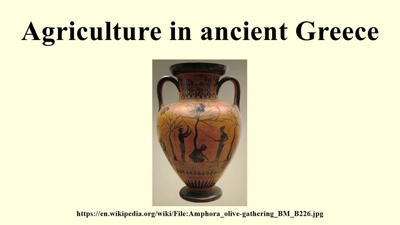 agriculture in ancient greece essay Slavery was the backbone to the strength and greatness of the ancient greeks   of informal though informative essays describing various aspects of greek  society  such as the political and agricultural aspects, from which they can gain  an.