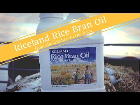 Riceland Rice Bran Oil - From the kitchen to the barn (Sponsored)