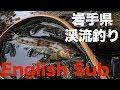 岩手県 渓流釣り 内陸河川 ~晩秋のサビヤマメ~ 2019年9月16日 Fishing in Iwate, Japan