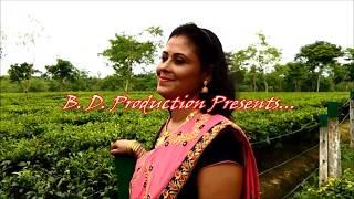 Xarodi Kumol Junak Mayare / Munmi Borah / Cover by :- Bidya Das