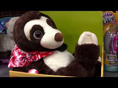 Singing Sloth Toy