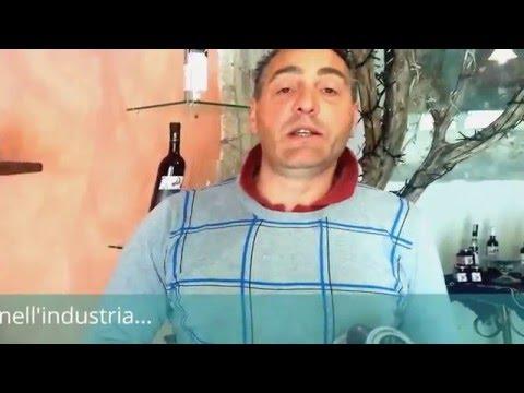 Perché sono speciali le visciole di Cantiano?