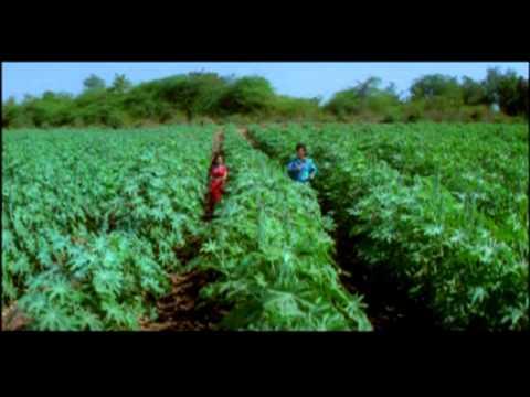 Tani Dheere Dheere Daala Bada Dukhala Rajaoo [Full Song] Kangna Khanke Piya Ke Angna