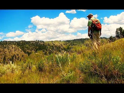 BACKCOUNTRY FLY FISHING-YELLOWSTONE  CUTTHROAT With Chris Walklet