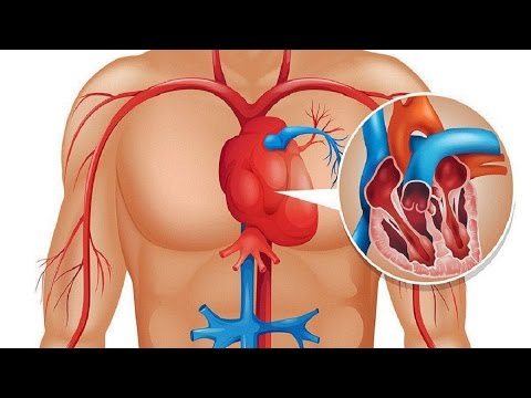 Kalp Krizinden 1 Ay önce Vücudunuz Sizi Uyarıyor