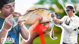 Googan SURVIVAL Skills Catch Clean and Cook! ( Schooling FISH )