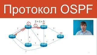 Протокол OSPF | Компьютерные сети. Продвинутые темы