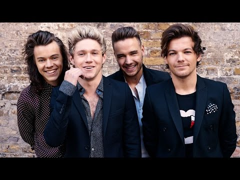 Чем занимаются участники One Direction?