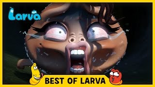 LARVA BEST OF LARVA | Funny Videos For Kids | Videos For Kids | LARVA Official WEEK 10 2017