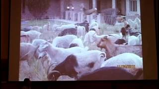 2013 Forum: Organic Land Mangement And Cutting Edge Alternatives (panel And Workshop)