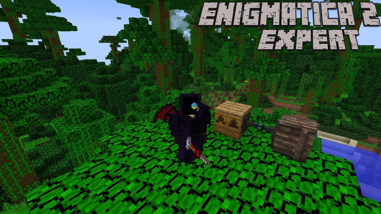 Pushing Into Forestry and Starting into Bees : Enigmatica 2