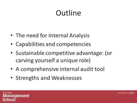 Lecture 5  1 Internal Audit Public and Private Assets