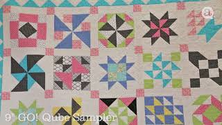 Eleanor Burns' Quilt Collection - AccuQuilt Gallery - 2018