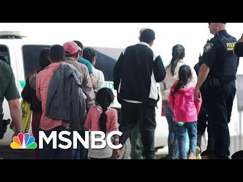 DOJ Official Blames Trump Administration For Separation Policy At Border   Andrea Mitchell   MSNBC