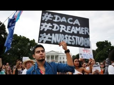 Pelosi protested for DACA deal with President Trump