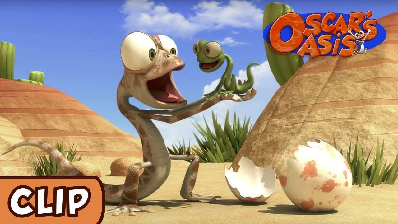 Download Oscar's Oasis - Baby Lizard | HQ | Funny Cartoons