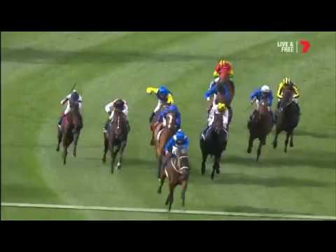 Winx  wins the 2016 Cox Plate at Moonee Valley Racecourse